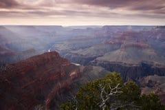 Grand Canyon på skymningen Arkivfoton