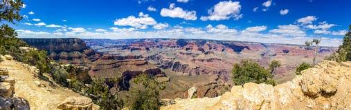 Grand Canyon -Panoramaansicht in Sommer mit blauem Himmel lizenzfreies stockbild