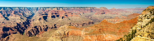 Grand Canyon Panoramic View Royalty Free Stock Image