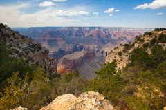 Grand Canyon Park Stock Photo