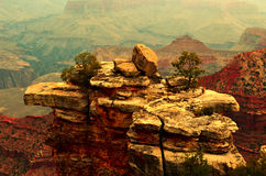 Grand Canyon. Photo of the Grand Canyon at the South Rim Stock Photo