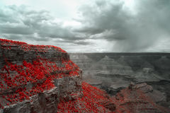 Grand canyon in red. Grand canyon south rim in infrared royalty free stock photography