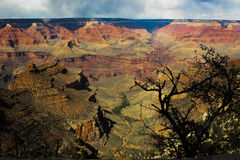 Grand Canyon -Reeks 3 Royalty-vrije Stock Afbeelding