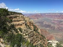 Grand Canyon rim. A clif overlooking the Grand Royalty Free Stock Image