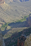 Grand Canyon River Surrounded By Greenery Royalty Free Stock Photo