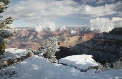 Grand Canyon, Südfelgen-Schnee Stockfotografie