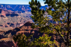 The Grand Canyon`s Stunning Sheer Drop-offs. The Grand Canyon`s abyss is filled with cobbled and cliff-edged rock stairs Royalty Free Stock Image