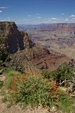 Grand Canyon Scenery Royalty Free Stock Images