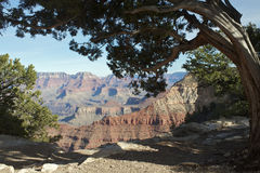 Grand Canyon Scenic Stock Photos