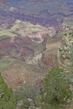 Grand Canyon Scenic Vista Royalty Free Stock Photography