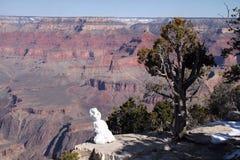 Grand Canyon snögubbe och vinter Arkivbild
