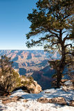 Grand Canyon and snow Royalty Free Stock Photo