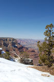 Grand Canyon in Snow Royalty Free Stock Photo