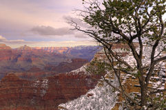 Grand canyon snow sunset Royalty Free Stock Photos