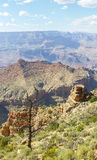 Grand canyon south. Desertview watchtover Stock Images