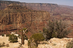 Grand Canyon - South Rim view. This is a view of the Grand Canyon from the South Rim royalty free stock image
