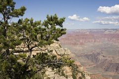 Grand Canyon South Rim View. Grand Canyon view from the South Rim in mid summer with a blue sky background royalty free stock photo