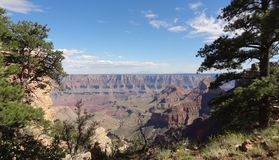 Grand Canyon south site. USA. stock photography