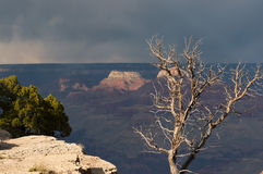Grand Canyon during the storm Stock Photos