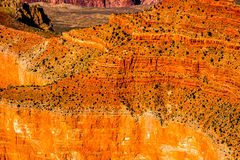 Grand Canyon sunny day with blue sky Royalty Free Stock Photography