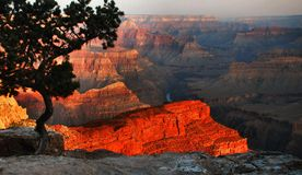 Grand Canyon At Sunrise Royalty Free Stock Image