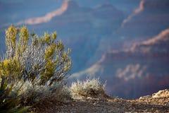 Grand Canyon Sunset, Arizona Stock Images