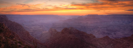 Grand Canyon Sunset Panorama royalty free stock images