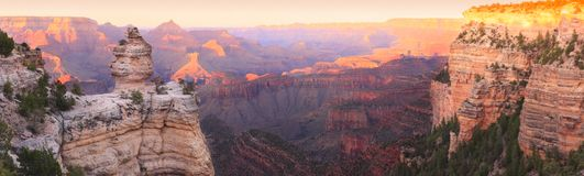 Grand Canyon Sunset Panorama. Panorama of the Grand Canyon (South Rim) with Sunset Colors Reflecting in the Rocks Stock Images