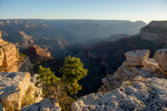 Grand Canyon at sunset Royalty Free Stock Photo