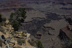 Grand Canyon Textures and Colors  Royalty Free Stock Photography