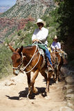 Grand Canyon Tourism. A tour guide and visitors ascend the popular Bright Angel Trail in Grand Canyon National Park Royalty Free Stock Image