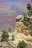 Grand Canyon tourist - 2 Royalty Free Stock Photo