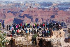 Grand Canyon tourist Stock Image