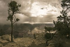 Grand Canyon with Trees, Mountains, Clouds, Rain and Dramatic Sky in Arizona, USA royalty free stock images