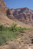 Grand Canyon Tributary Stock Photo