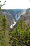 Grand Canyon Upper Falls. Grand Canyon at Yellowstone Natl Park stock photos