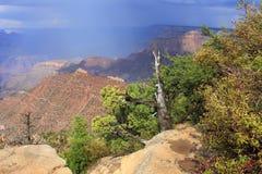 Grand Canyon, USA Royalty Free Stock Photography