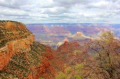 Grand Canyon. USA, Arizona. Panoramic Great View Stock Image