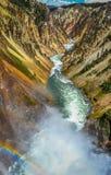 Grand Canyon van Yellowstone-Regenbogen royalty-vrije stock foto's