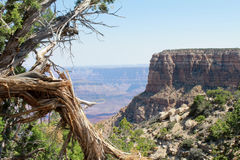 Grand Canyon View Stock Photos