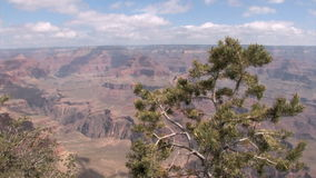 Grand Canyon View stock video footage