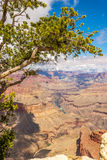 Grand Canyon - View from Mohave point Stock Photo