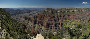 Grand Canyon view panorama from north rim Stock Photography