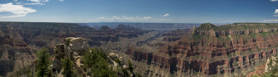 Grand Canyon view panorama from north rim Stock Images