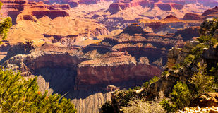 Grand Canyon. A view into the Grand Canyon from the South Rim Stock Photography