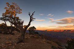 Grand Canyon. View of the Grand Canyon during sunrise stock photo