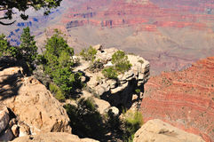 Grand Canyon. Stock Photography