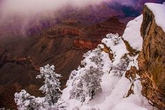 Grand Canyon vintersäsong Royaltyfria Bilder