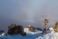Grand Canyon vinterstorm Fotografering för Bildbyråer