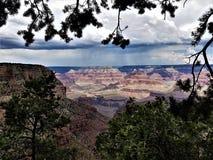 Grand Canyon Virga gestaltet durch Evergreens Lizenzfreies Stockbild
